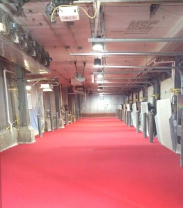 Urethane Cement Floor