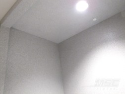 Full-Flake-Broadcast-Shower-Stall-Ceiling